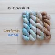 11 Water Striders - Spring fade set (4 skeins Merino Sock)