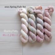 11 Blooming Pretty - Spring fade set  (4 skeins Merino Sock)